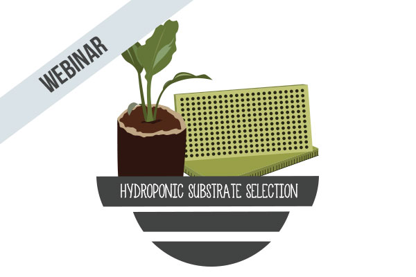Hydroponic Substrate Selection